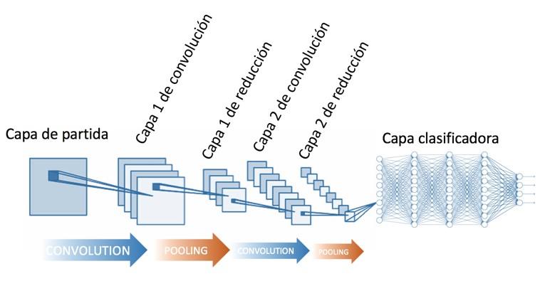 Redes Neuronales Convolucionales en el reconocimiento de imágenes