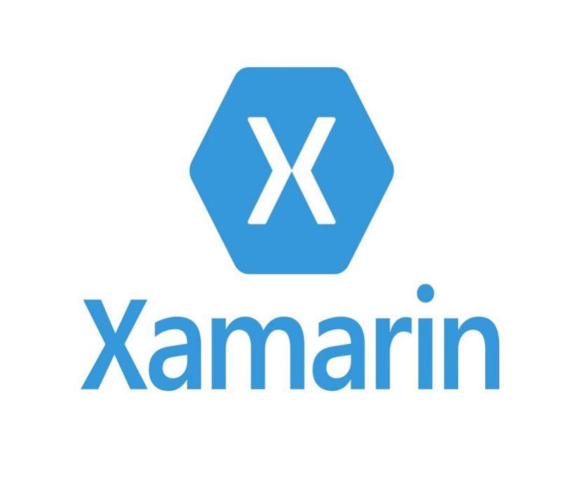 Nuevos avances en Xamarin Forms 3.1